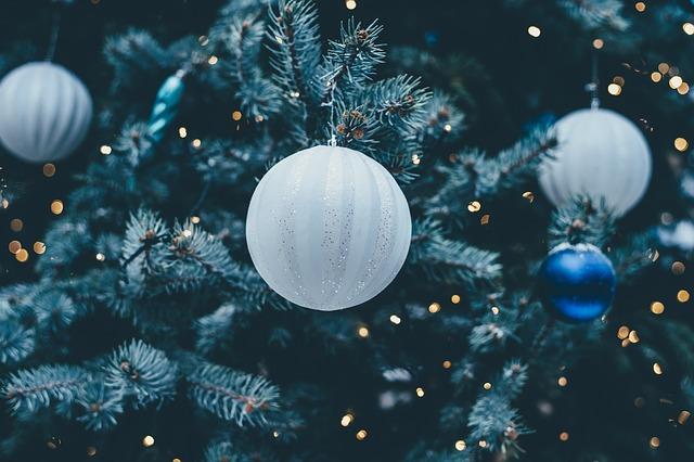 vánoční cetka.jpg